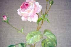 Mila Lafaye-rose