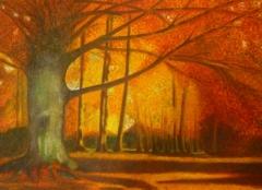 Fairouze-Clairiere-automne